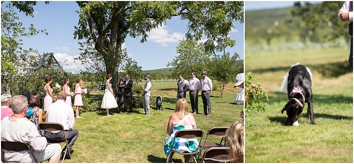 A Farm, a Wedding, and Miss Frankie ~ CTG Photography_0009