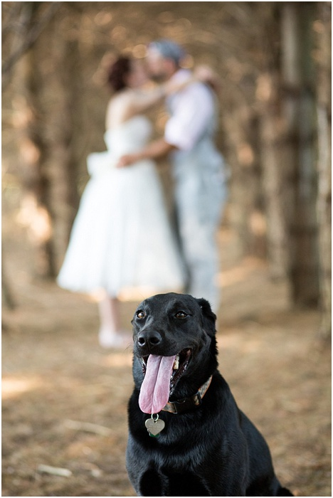 A Farm, a Wedding, and Miss Frankie ~ CTG Photography_0011