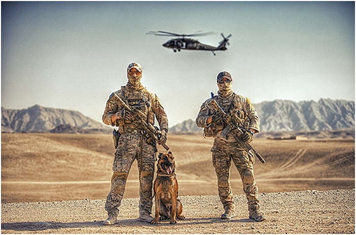 Military Working Dogs ~ Gagan Dhiman Photography_0002